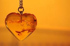 heart-1202129_960_720.jpg